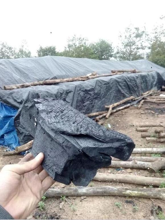 广东东莞市木炭批发,烧烤木炭,木炭市场,木炭价格厂家提供