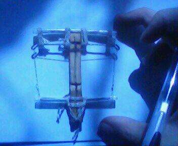 小三床技图片_百度图片搜索_【图片】技术贴,巴掌大小的三弓床弩制作【技术宅吧】_百度贴吧