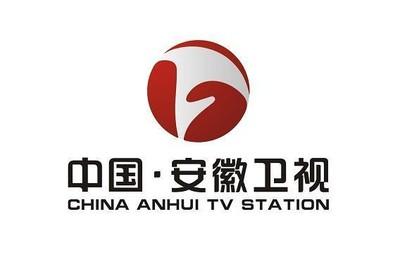 安徽省桐城电视台_回复 收起回复