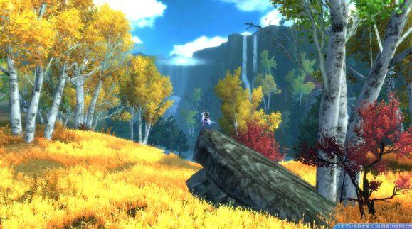 天下3的截图在哪_凤梧森林`