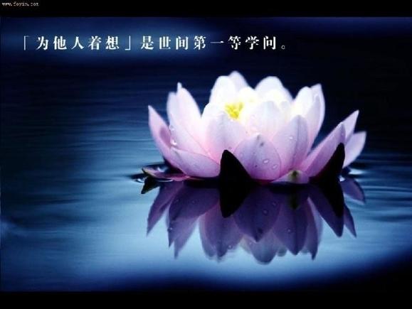 惊蛰30 / 作者:庚达空 / 帖子ID:510848
