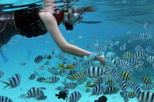 塞班岛潜水\