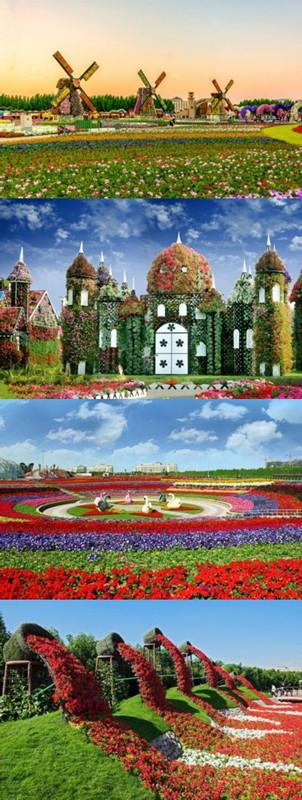 迪拜造世界最美花园