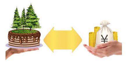银行涉农贷款申请资料